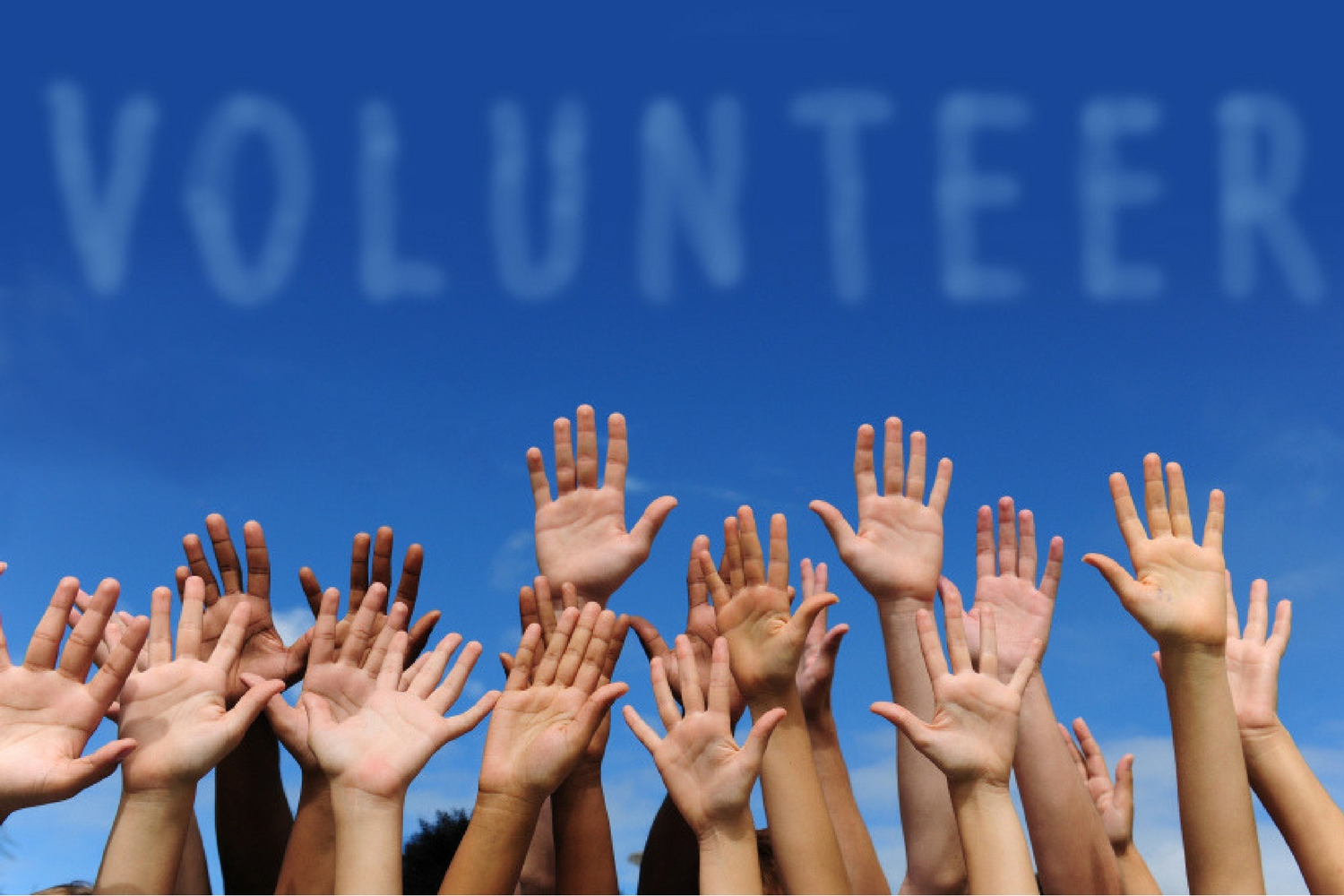 Volunteering and Sponsorship