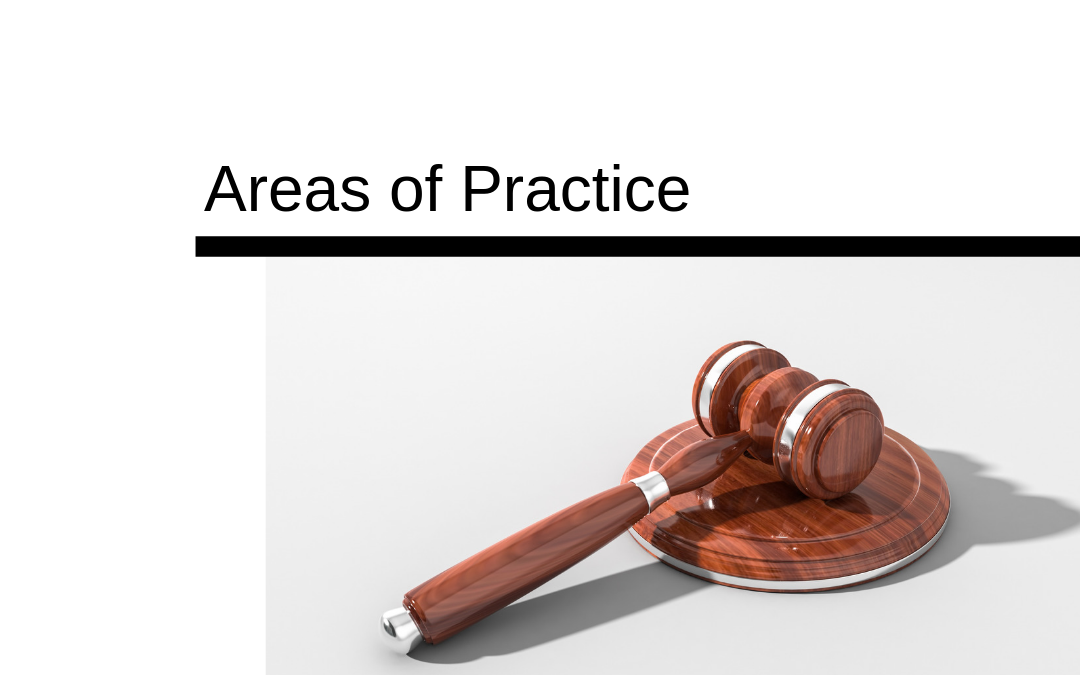Expert Court Reporters' Areas of Practice