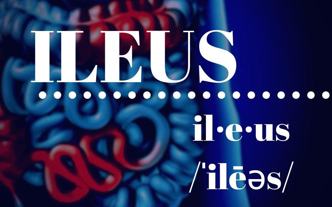 The Ileus and the Odyssey